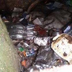 Rubbish under the Esplanade Sidmouth